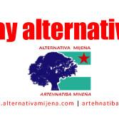 Subvenciones para las AMPAS mijeñas [Pleno 2019-11]